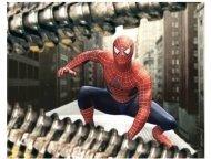 """""""Spider-Man 2"""" Movie still:  Tobey Maguire"""