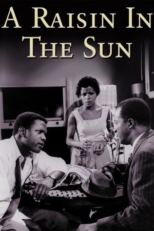 Raisin in the Sun