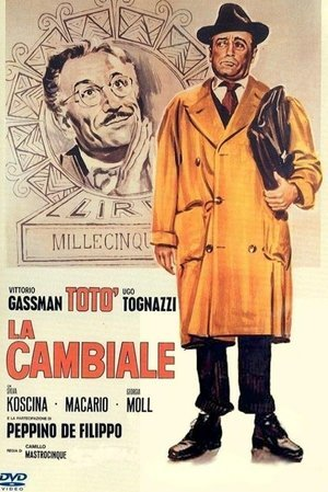 Cambiale